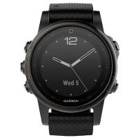 Смарт Часы Garmin Fenix 5S Silver / Black Band