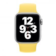 Монобраслет для Apple watch 40mm Ginger Solo Loop
